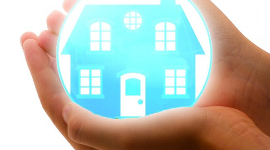 Protect Home - Holding in Hands